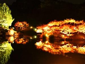 特別名勝 栗林公園 「秋のライトアップ」