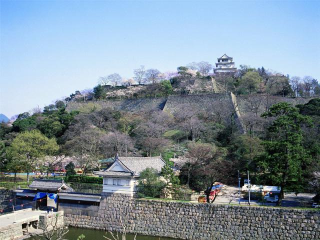 石垣の高さ日本一を誇る【丸亀城】